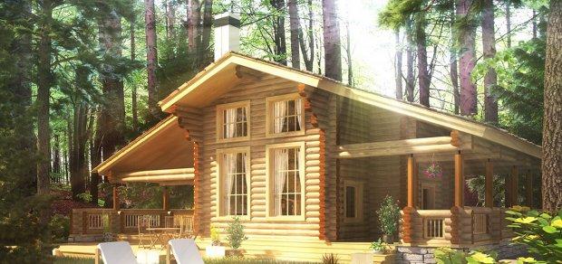 Строительство дачных домов и